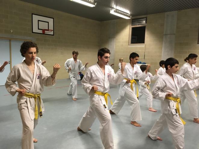 Adultes ceintures jaune en Kata